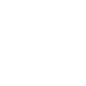 Ultimate boxer